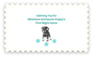 Calming Toy for Miniature Schnauzers First Night Home